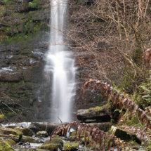 Waterfall watching