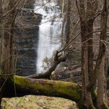 Water, Waterfalls, trees,