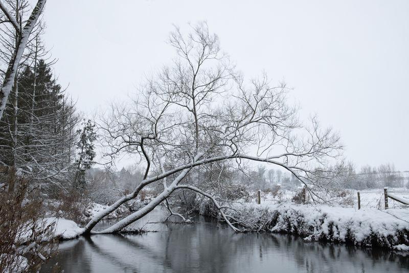 Winter windrush 2019 (3 of 5)