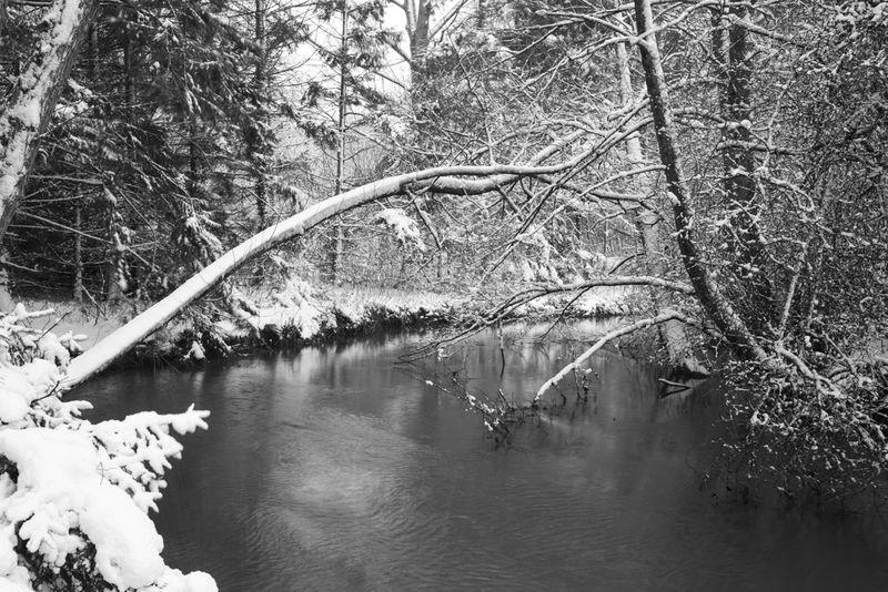 Winter windrush 2019 (4 of 5)