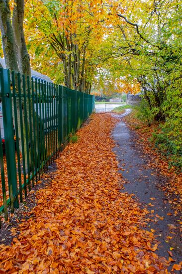witney autumn (2 of 5)