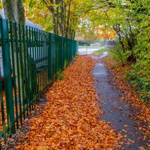witney autumn (2 of 5)