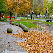 witney autumn (4 of 5)