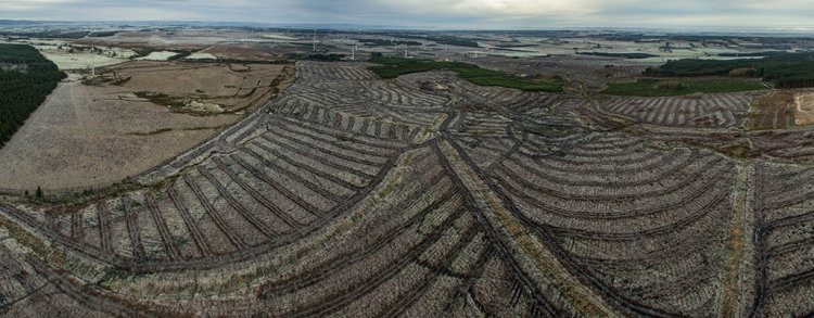 Drone Wind Farm Survey