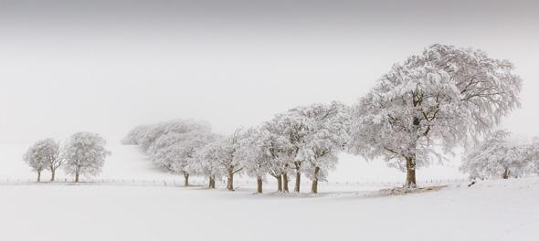 14 Auldhouse snow -19 points