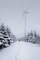 87 Winter Walk - 18 points