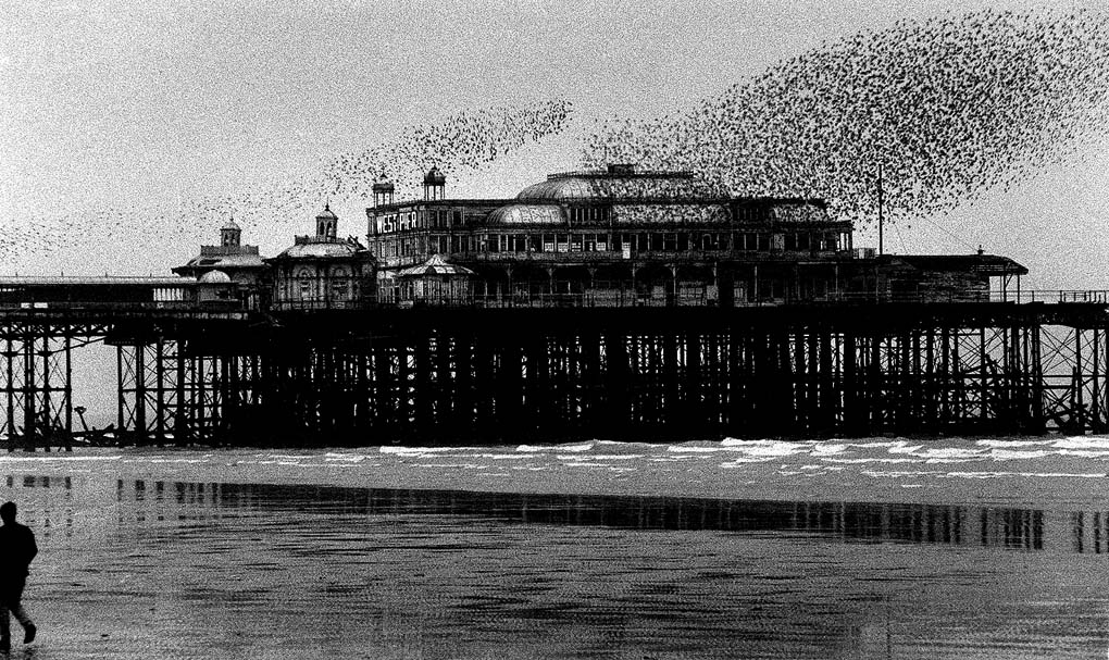 The West Pier, Brighton