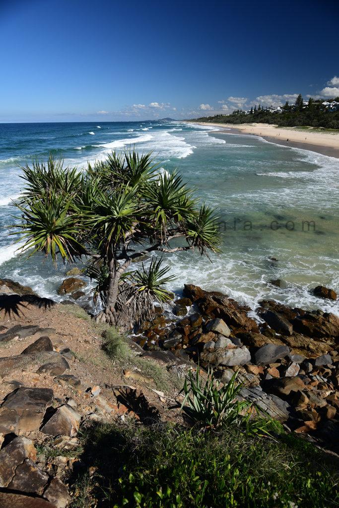 Sunshine Beach Blues