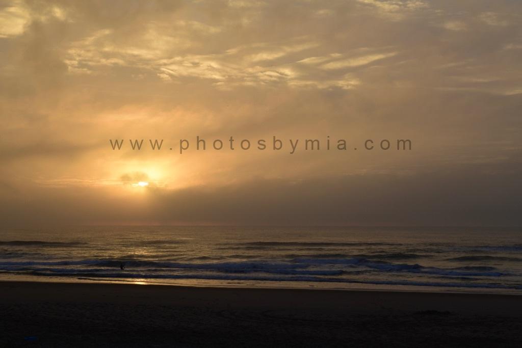 Yellowing Dawn