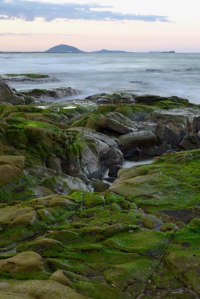 Mooloolaba Green