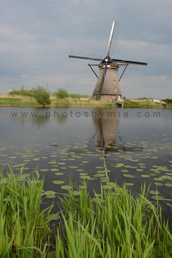 Reflective Windmill