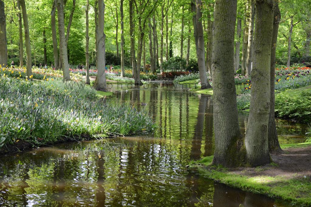Waterways of Keukenhof