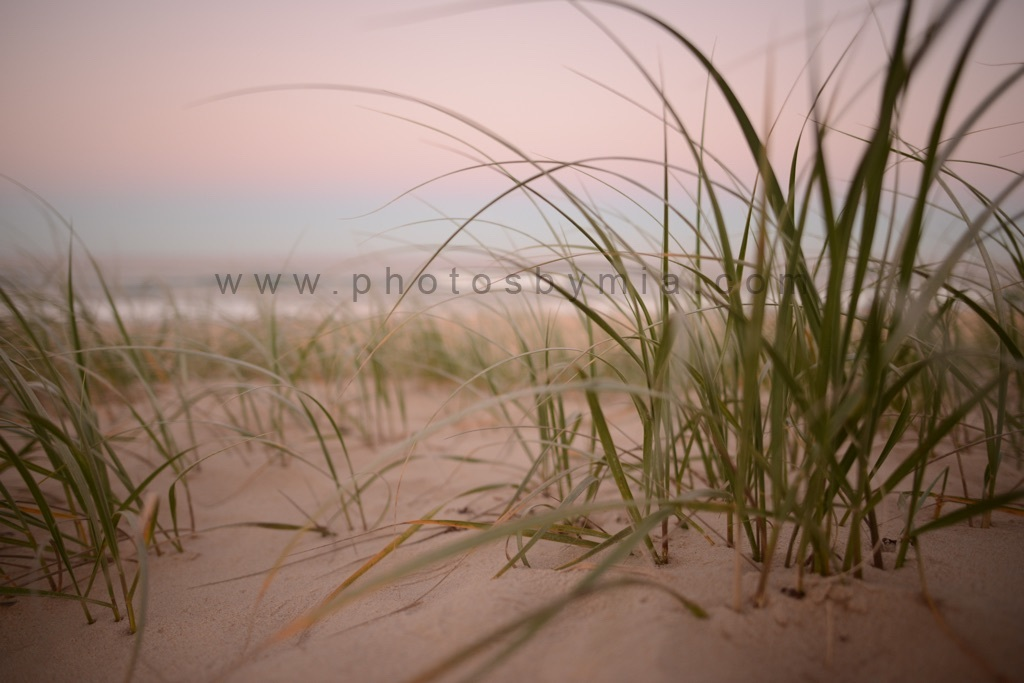 Pink Sand Sunset