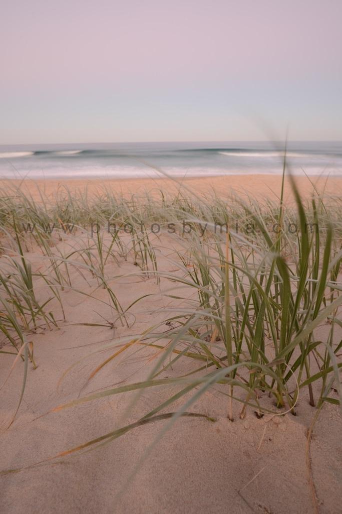 Pink Sand Waving