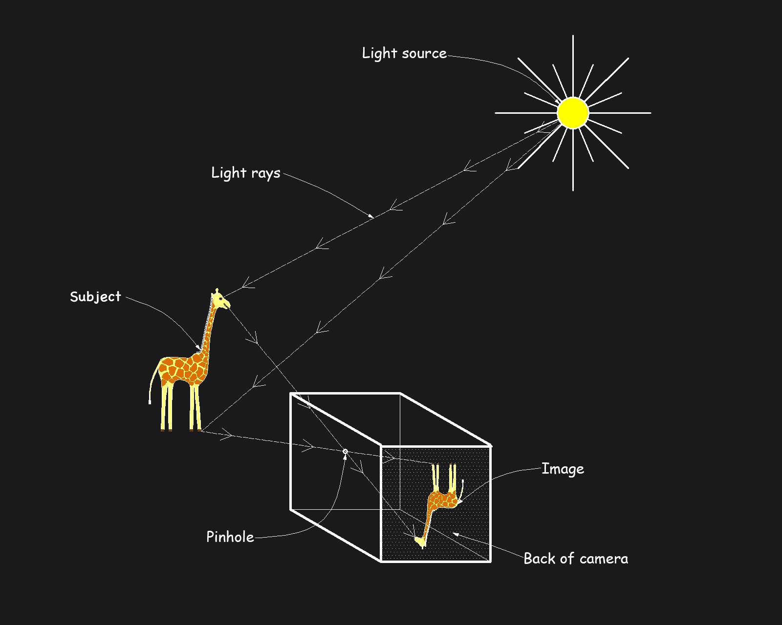 Camera diagram-19