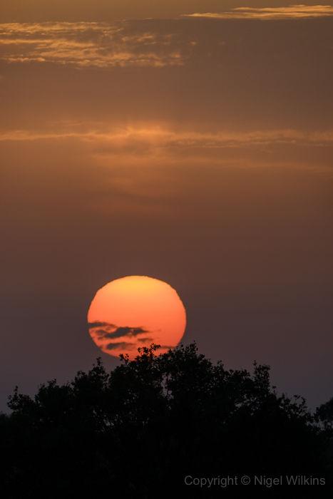 Ashorne Sunset
