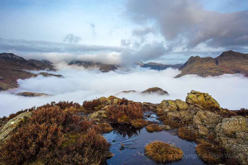 Langdale Inversion