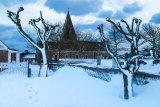 Tree Sculptures, St Ouen's Church