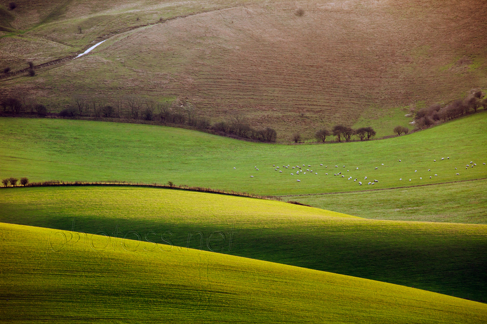 Winter on the South Downs