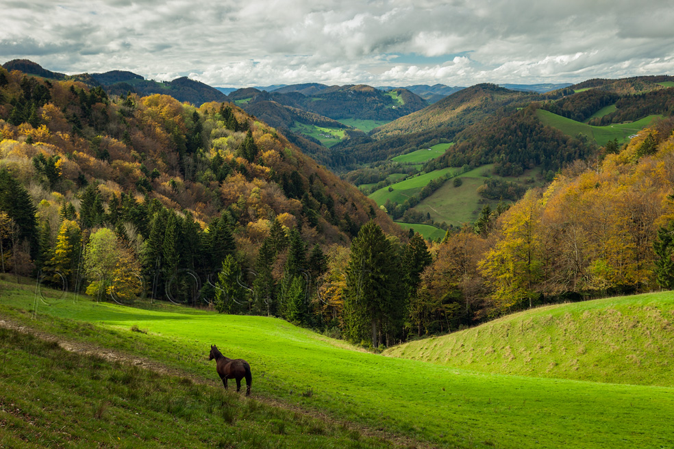 Autumn afternoon in Jura Mountains