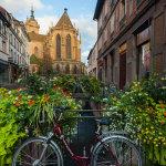 Morning in Colmar