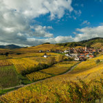 Autumn in Niedermorschwihr