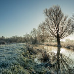 Frosty morning in Ouse Valley