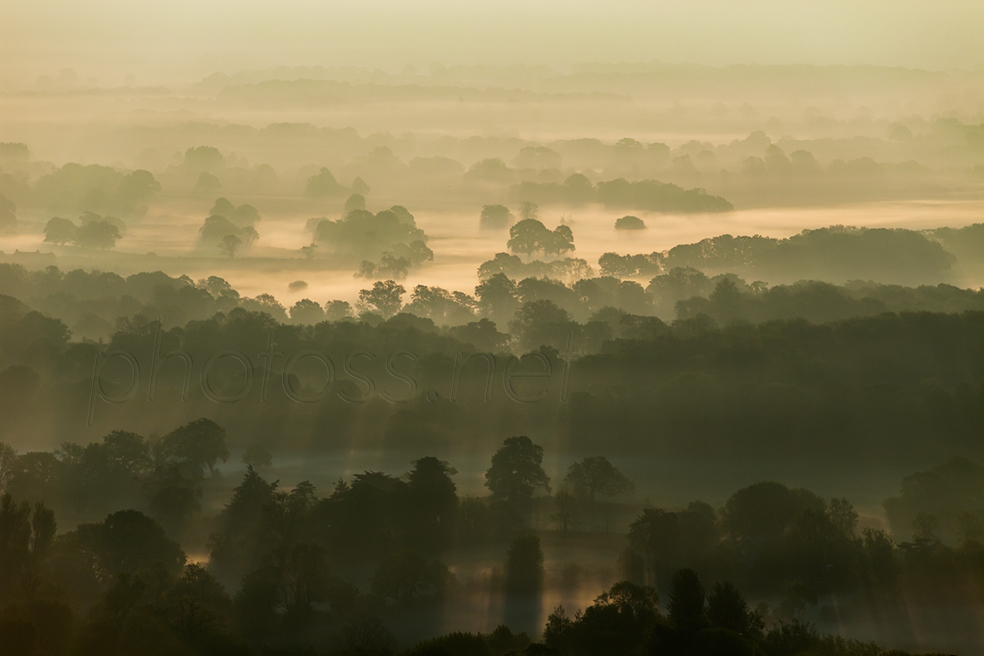 Morning mist near Plumpton in East Sussex