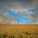 Summer rainbow on the South Downs