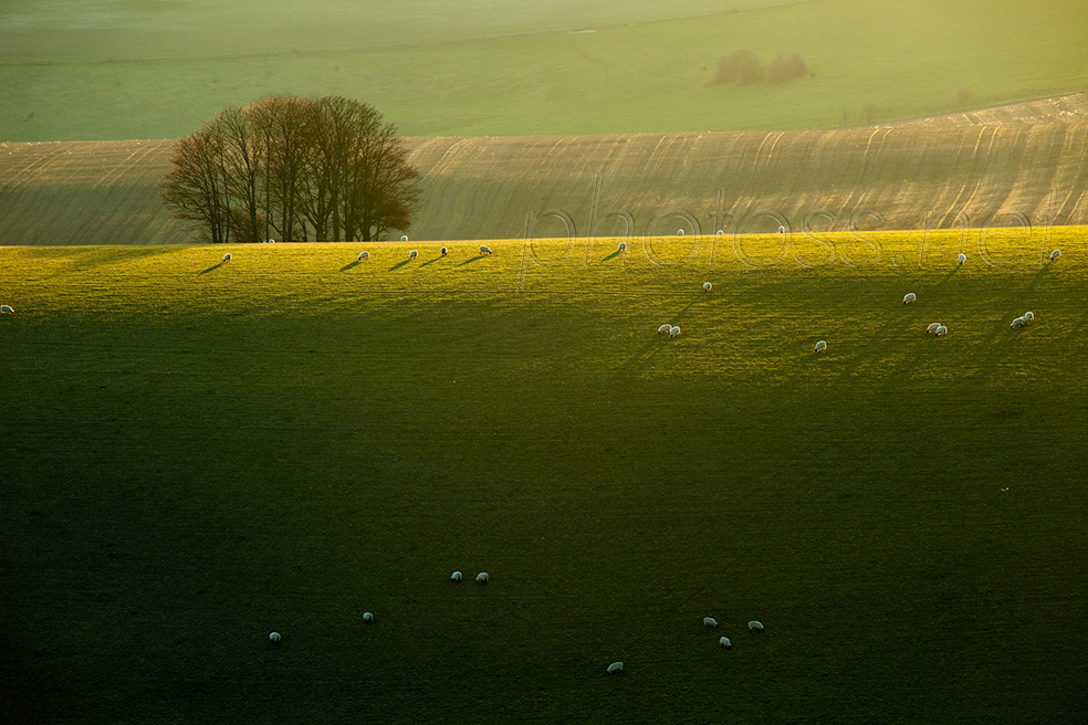 Winter on the South Downs near Brighton