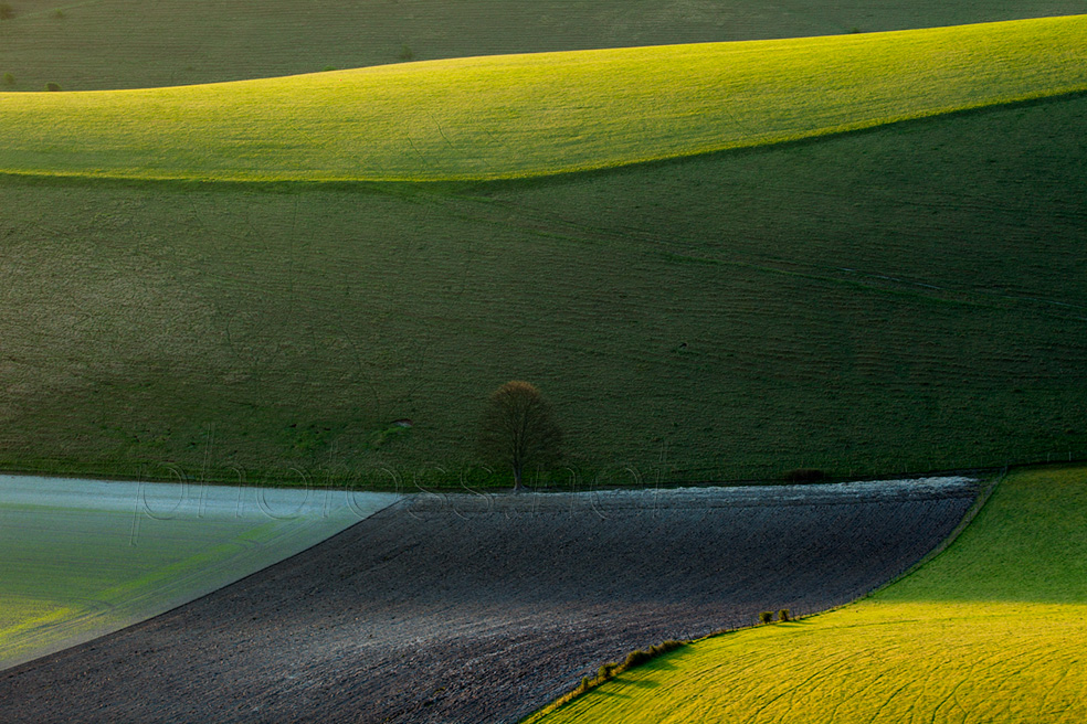 May morning on the South Downs in East Sussex