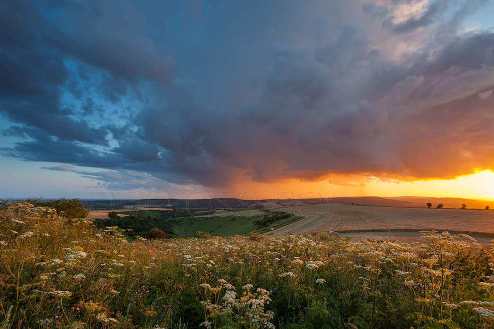 Summer sunset on the South Downs in West Sussex