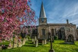 Church & Blossom HDR