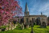 Church & Blossom