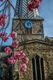 Clock & Blossom HDR