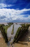 Wreck, Berrow Beach