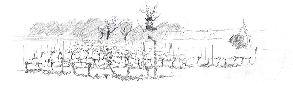 Tying in the Vines. Sketchbook 93 [63]