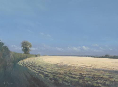 Field at Dunsden