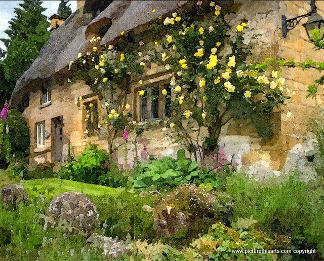 No 13. Yellow rose's.