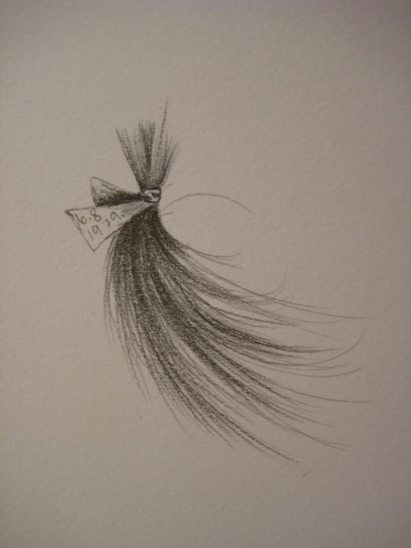 Sister's Hair