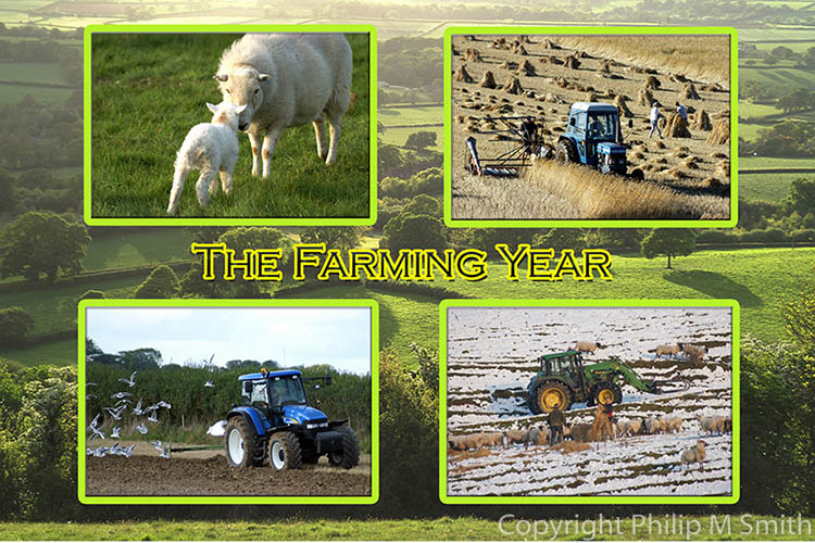20174 The Farming Year