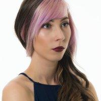Modelling Portfolio Portraits