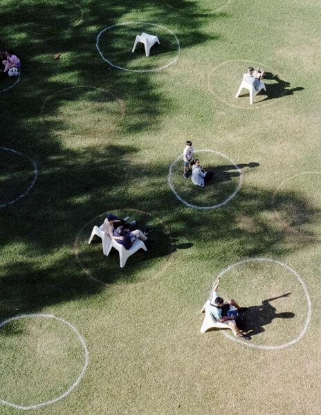 Social circles, Sydney
