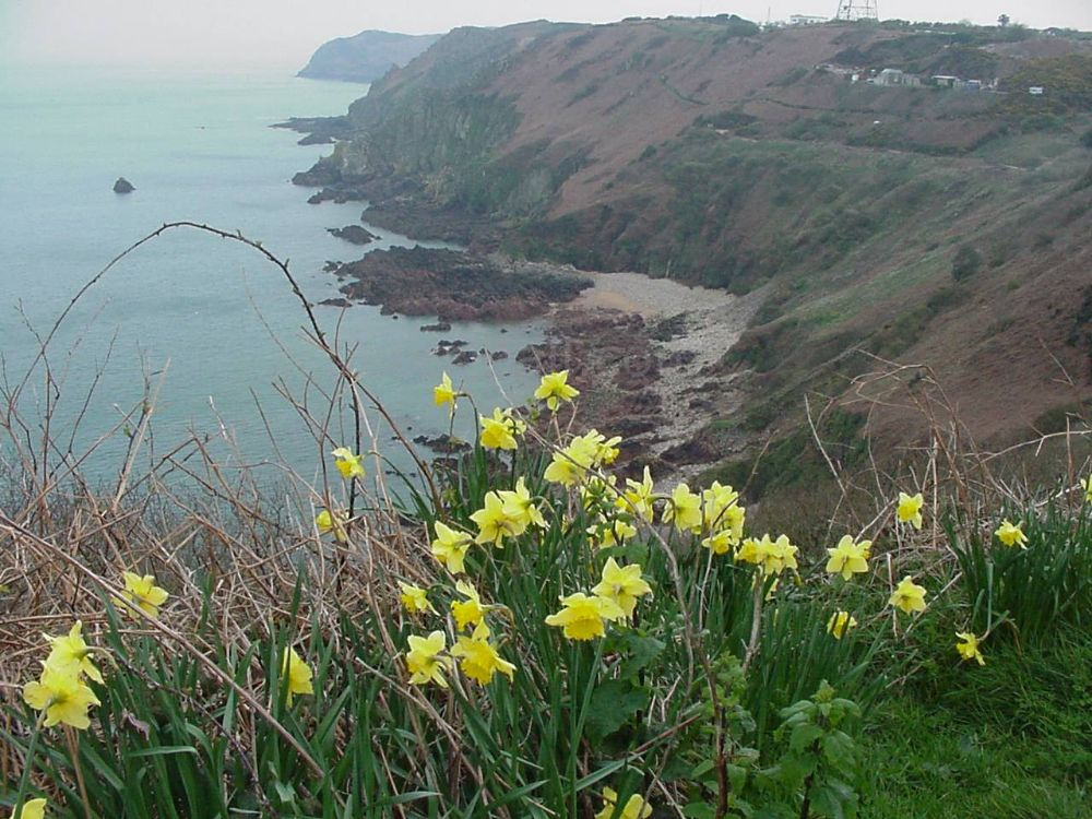 North Coast of Jersey, Channel Islands