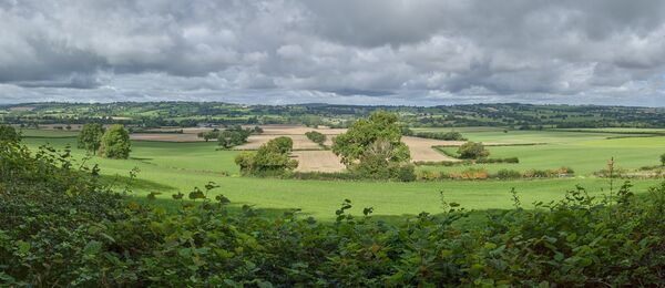 Looking North from Wenlock Edge