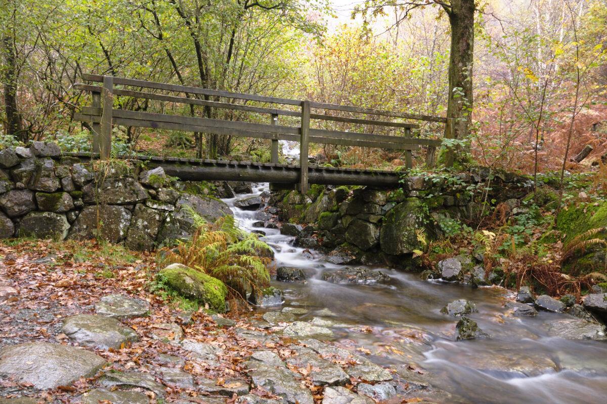 Footbridge over Flowing Stream Cumbria