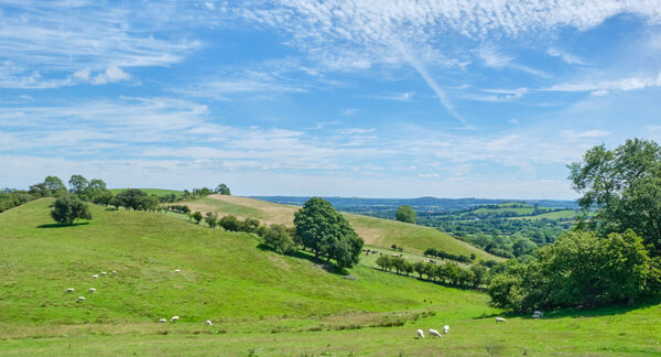 View of rural Pastures in Shropshire