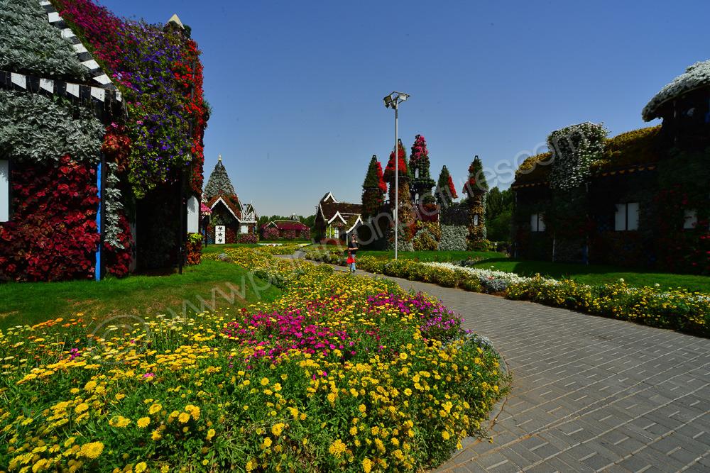 Flower Gardens, Flower Houses