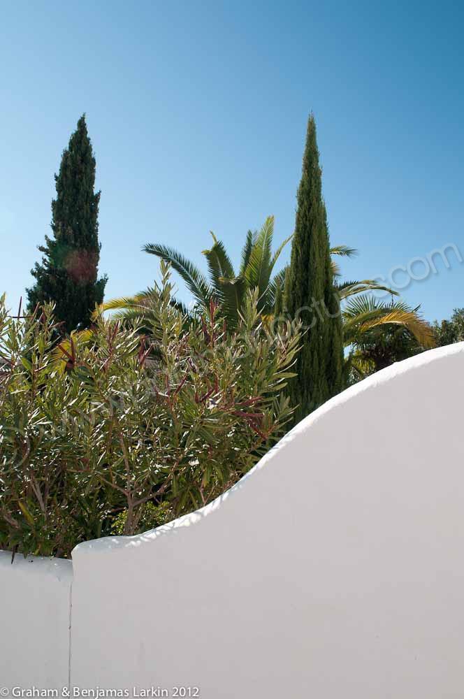 Spanish garden View