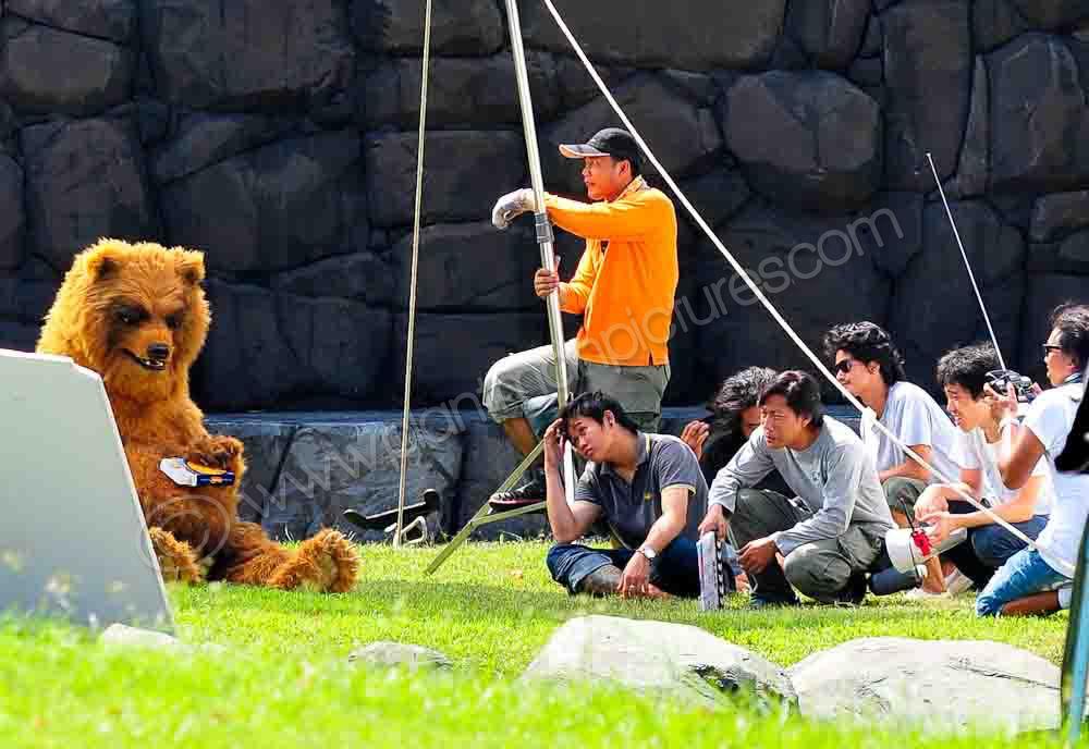 Film Crew and Bear